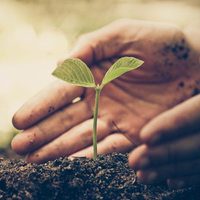 Ecosostenibilità serramento pvc